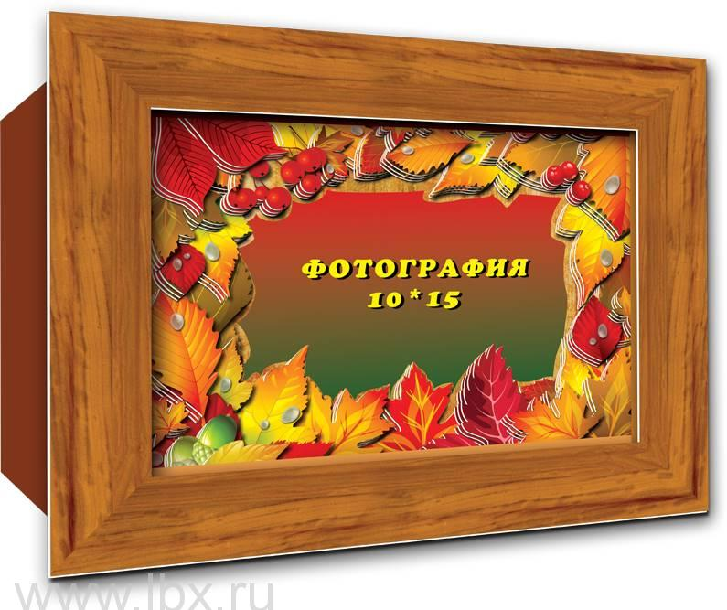 Объёмная фоторамка `Осенние листья` от Vizzle (Виззл)