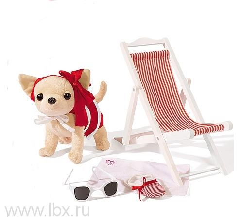 Собачка чихуахуа на пляже Chi Chi Love (Чи Чи Лав)
