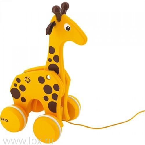 Каталка-жираф, на веревочке, BRIO (Брио)