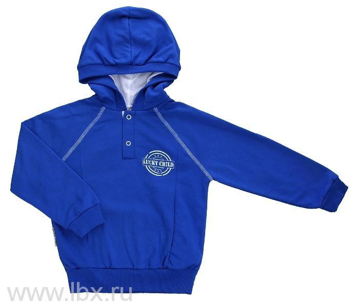 Кофта с капюшоном-толстовка, Lucky Child (Лаки Чайлд), модель 8-13 синяя