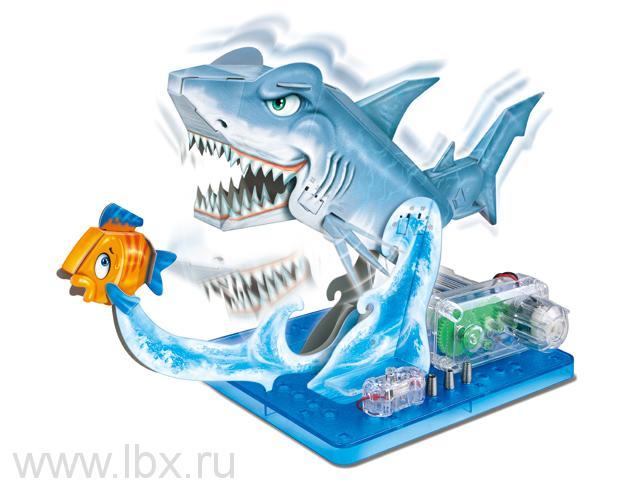 Научный опыт 37105 `Акула` на батарейках Amazing Toys (Эмейзин Тойс)