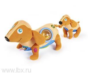 Каталка `Собака` с веревочкой Oops(Упс)