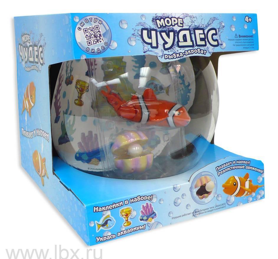 Рыбка-акробат с аквариумом, Море чудес