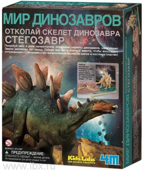 Скелет Стегозавра 4M