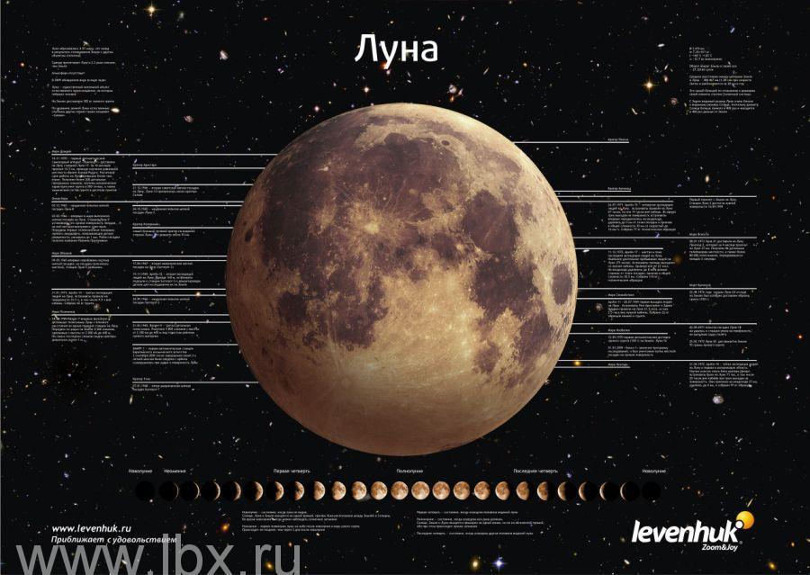 Постер Levenhuk (Левенгук) «Луна»