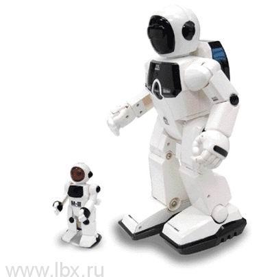 Программируемый робот Silverlit (Силверлит)