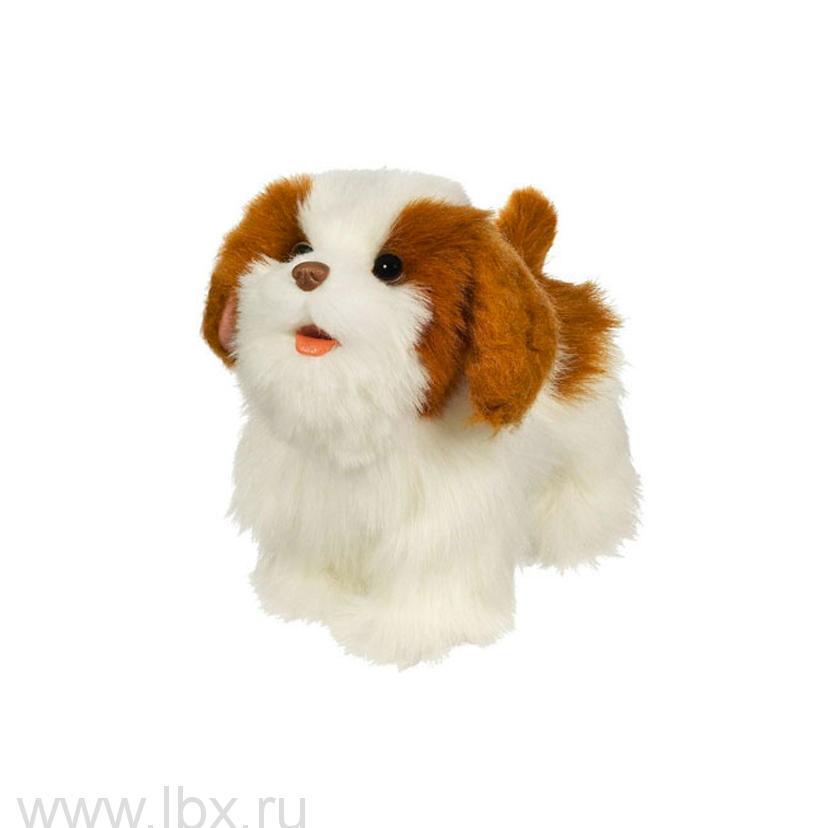 Игрушка `Ходячий щенок`, Hasbro Fur Real Friends (Хасбро фёр риал френдс)